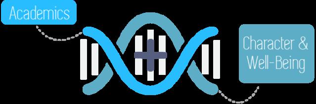 manifesto_DNA